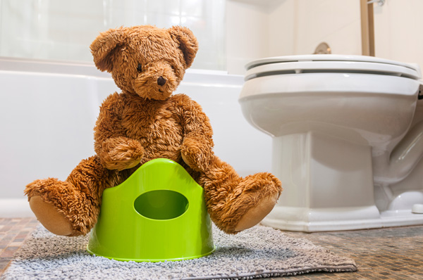 Teddy bear on potty training toilet with toilet in background.